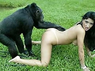 Open air sex with monkey